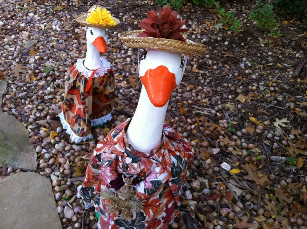Geese Girls in Thanksgiving Regalia