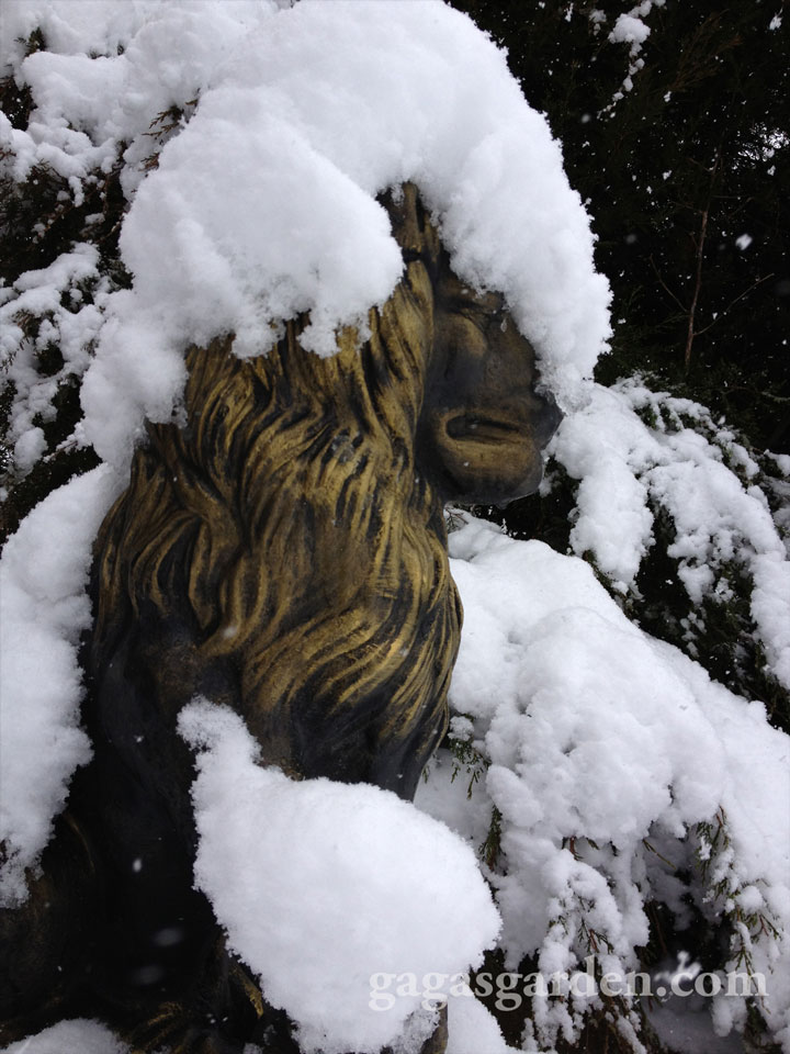 Garden Lion Snow Gauge