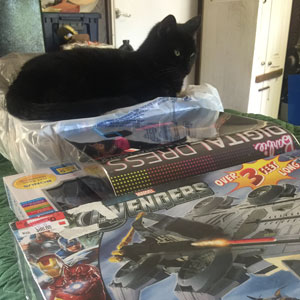 Nadia pondering her Halloween Costume 'Avenger' 'Digital Dress' ? It 'wears' her out! #AdoptBlackCats