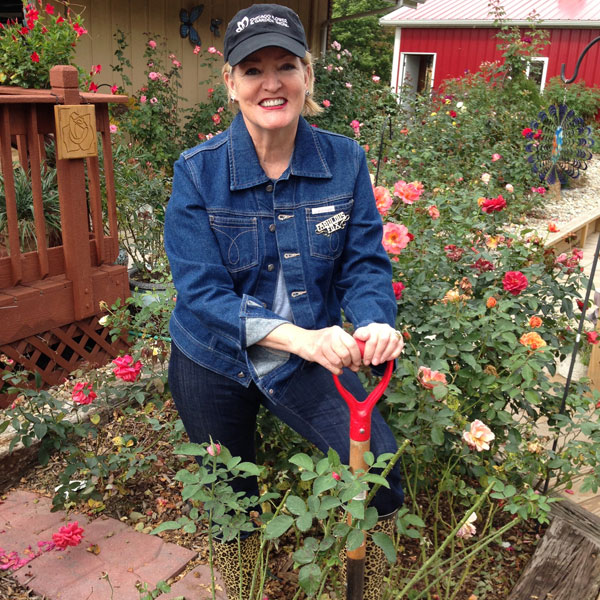 Susan Fox Digging In The Rose Garden