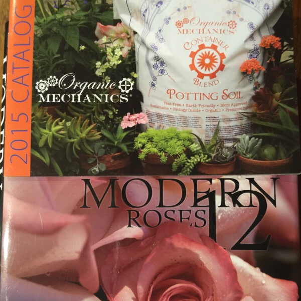 Good Roses Start With The Right Soil| Organics Mechanics